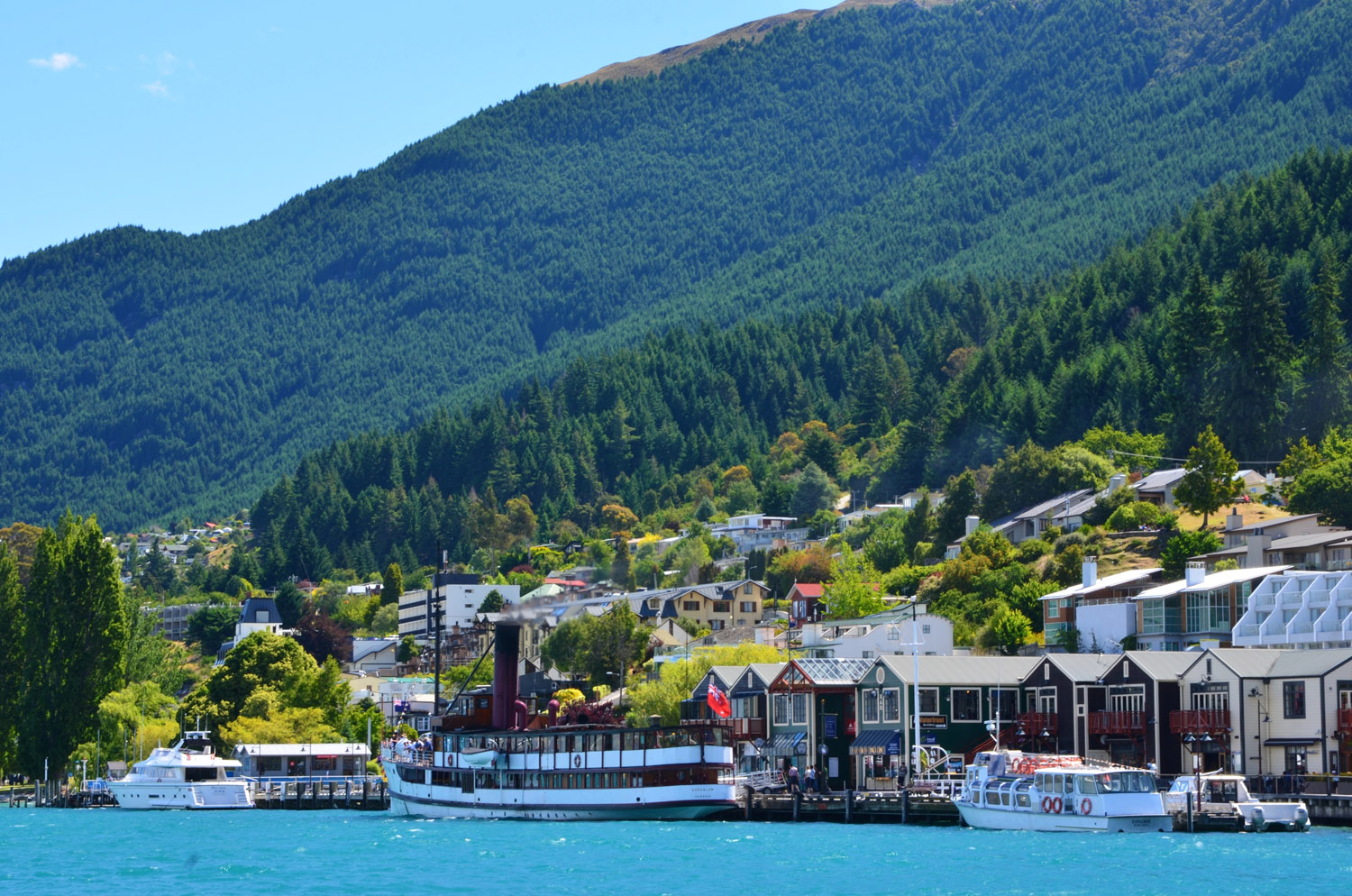 Travelling with Kids to New Zealand